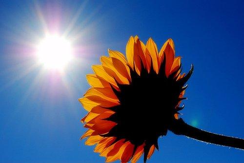 The sun has got his hat on hip hip hip hooray…..